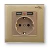Розетка с заземленням та 2 USB Profi therm Singl Pure Gold